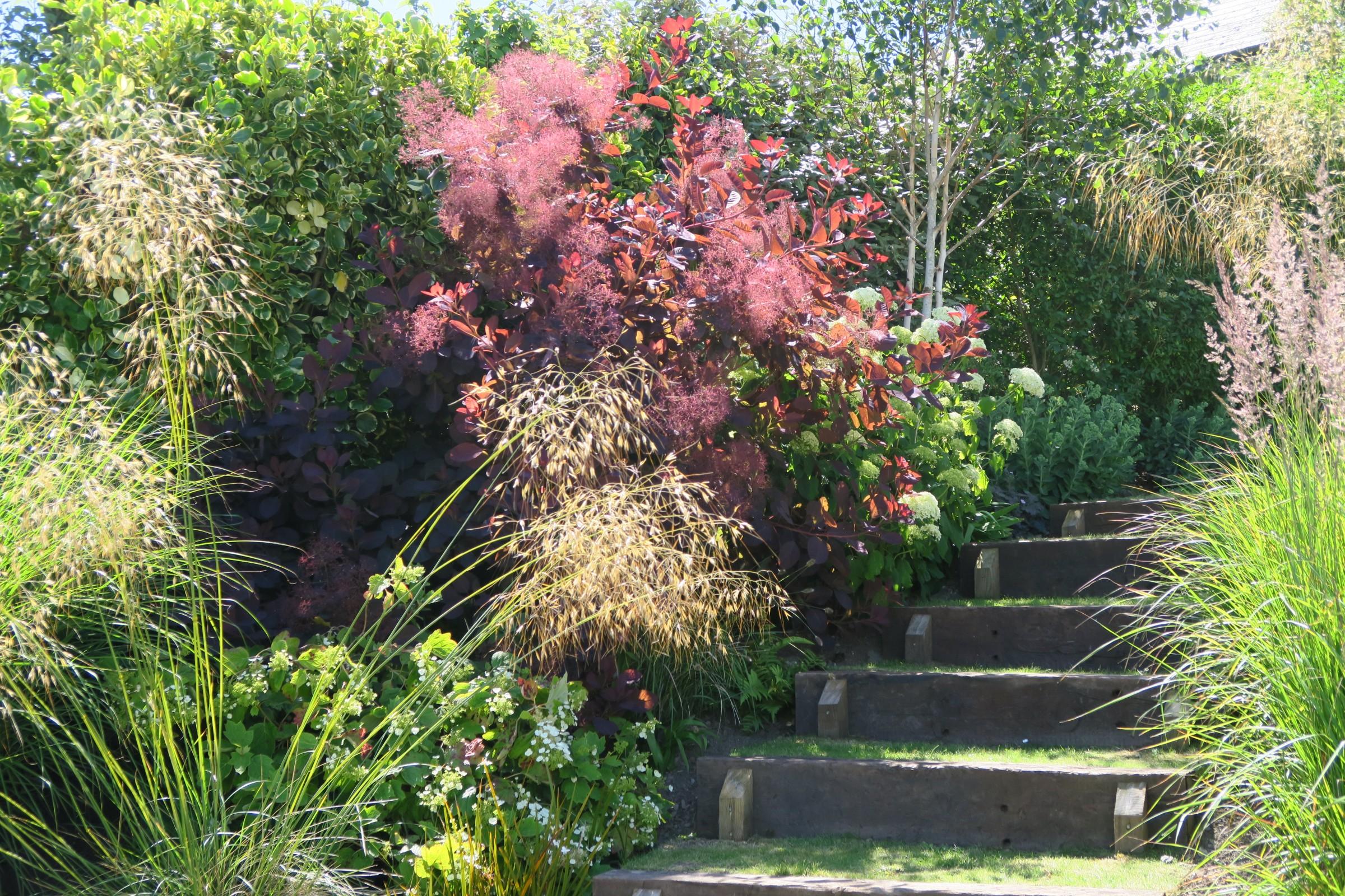 Sloping Garden, Polruan, Cornwall